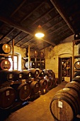 Balsamic vinegar barrels in cellar (Panzano, Tuscany)