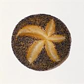 A poppy seed roll