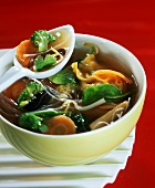 Chinese soup with wonton parcels, vegetables & glass noodles