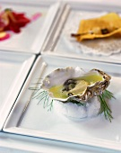 A fresh opened oyster with lime juice