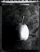 A pear (b/w photo)
