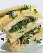 Sandwiches with chicken breast, garden cress and omelette
