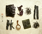 Eight different types of dried seaweed