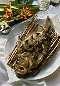 Steamed John Dory, studded with bay leaves and anchovy