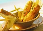 Gegrillte Maiskolben mit Koriander-Chili-Butter
