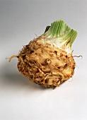 A celeriac bulb