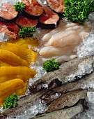 Still life with salmon trout, fish fillets & salmon cutlets