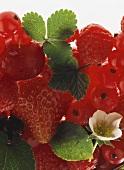 Erdbeeren, Himbeeren, Johannisbeeren und eine Kirsche
