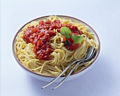Spaghetti with tomato sauce & tomatoes in a dish