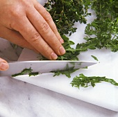 Chopping herbs with a knife