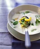 Vegetable and kefir soup