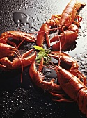 Three boiled lobsters on a black table top