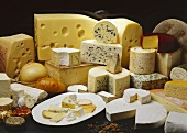 Selection of cheeses from Austria