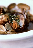 Clams, fisherman's style