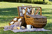 Picnic basket with baguette in meadow