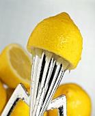Zitronenhälfte auf Zitruspresse