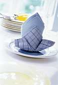 Blue Napkin on Plate
