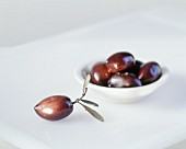 An olive with leaves with a bowl of olives beside it