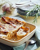 Red lasagne with rabbit ragout