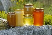 Various types of honey in jars (outdoors)