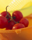 Tomaten im Abtropfsieb