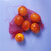 Blood oranges in net