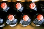 Red wine maturing in magnums (Domaine de Trevallon)