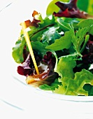 Pouring dressing over mixed salad leaves