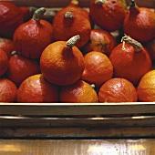 Pumpkins (variety: Oranger Knirps) in a crate