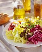 Gemischter Blattsalat mit Essig-Öl-Dressing
