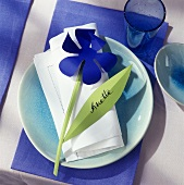 Table setting with windmill as place card