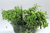 Various bunches of herbs in a bowl of water