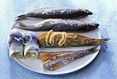 Rollmops, matjes fillet, red herring and salted herring