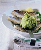 Pike-perch with potato and pea puree