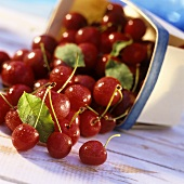 Cherries falling out of punnet