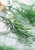 Sprig of rosemary with chopping knife