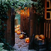 Illuminated pumpkins against a fence in a garden
