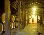 Winterfester Weinkeller im Weingut Reynella, McLaren Vale
