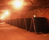 Sparkling wine bottles in pupitre, Loire Valley, France