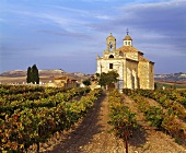 L'Ermita vineyard with church above Pesquera de Duero, Spain