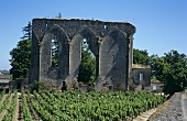 Ruins & vineyards in St. Emilion wine producing area, Bordeaux