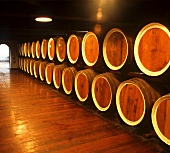Wine storage at Tintara Winery, McLaren Vale, Australia