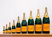 The nine different sizes of champagne bottles