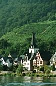 Wine village Briedern an der Mosel, Cochem-Zell,Rheinland Pfalz