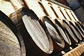 Wine barrels at Yalumba Winery, Barossa Valley, Australia
