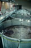 Modern fermenters at Taylors Fladgate & Yeatman, Portugal