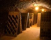 Pupitres in Seppelt wine cellar, Victoria, Australia