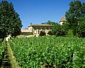 The St. Colombe wine estate, Cotes de Bourg, Bordeaux, France