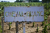 Cheval Blanc sign in vineyard, St. Emilion, France
