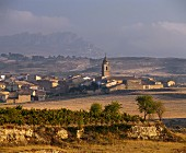 The village of Fonzaleche, west of Haro, Rioja, Spain
